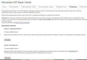 Моя шпаргалка - плагин WP Super Cache и его настройка-4